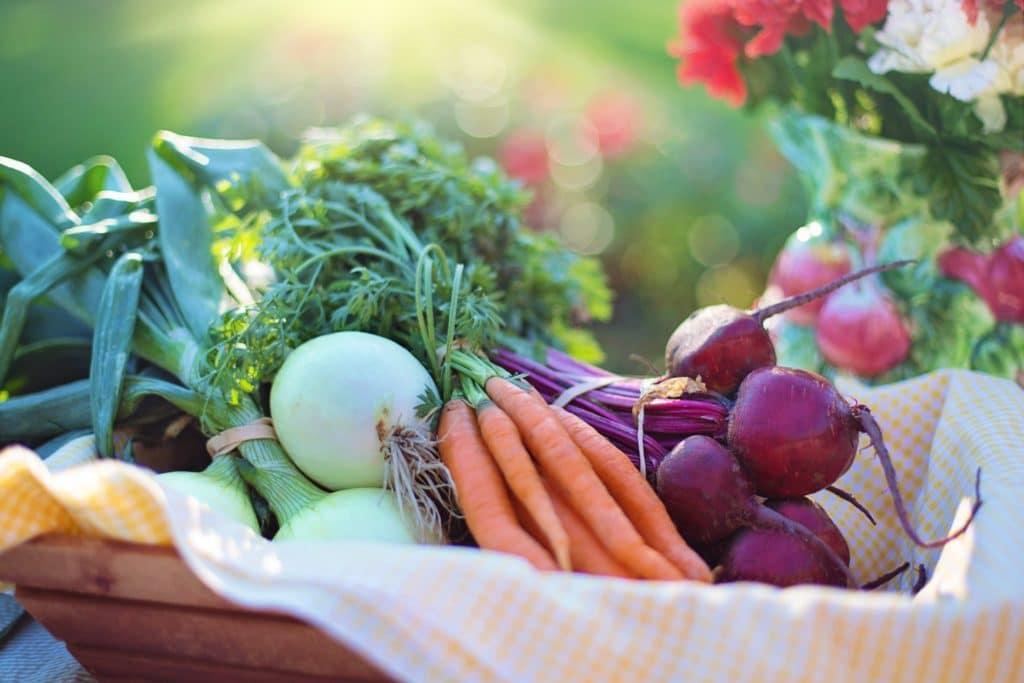 Cold Spring Farm - agriculture basket beets