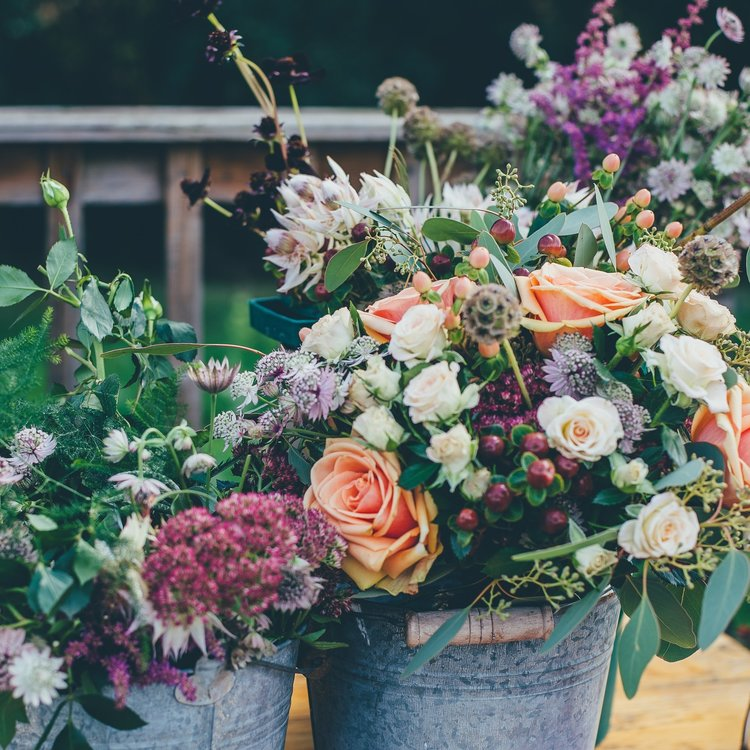 Cold Spring Farm offers assorted native and edible as cut flowers for decorating and eating!