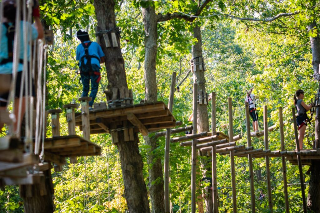 Adventure Forest -- 11 Trails, 23 zip lines, 6 difficulty levels, and over 160 challenge bridges