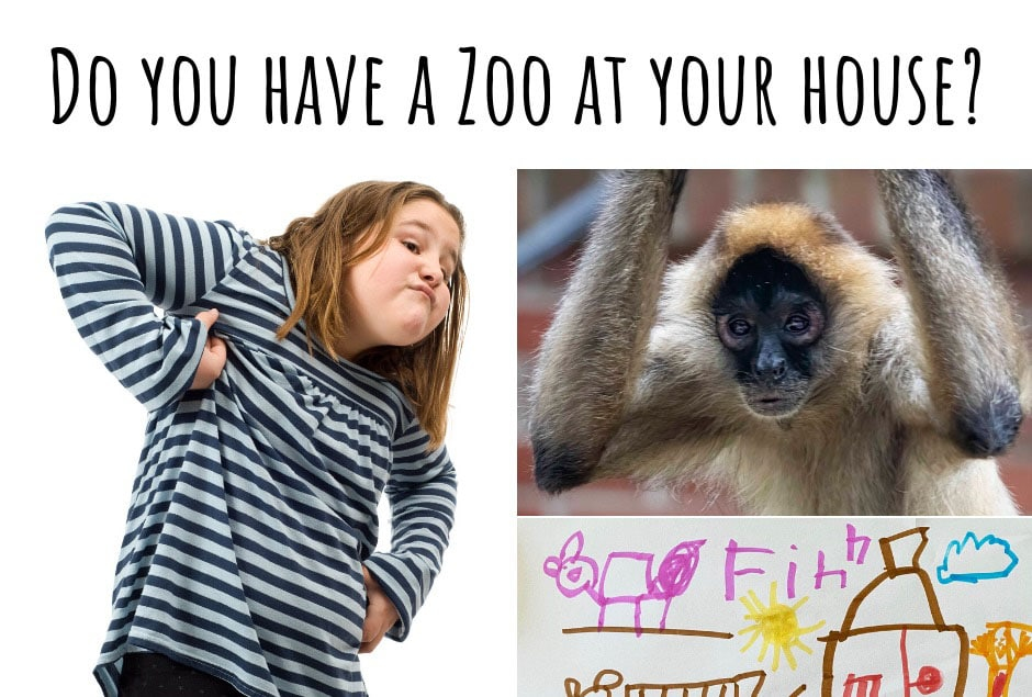Do You Have a Zoo at Your House?