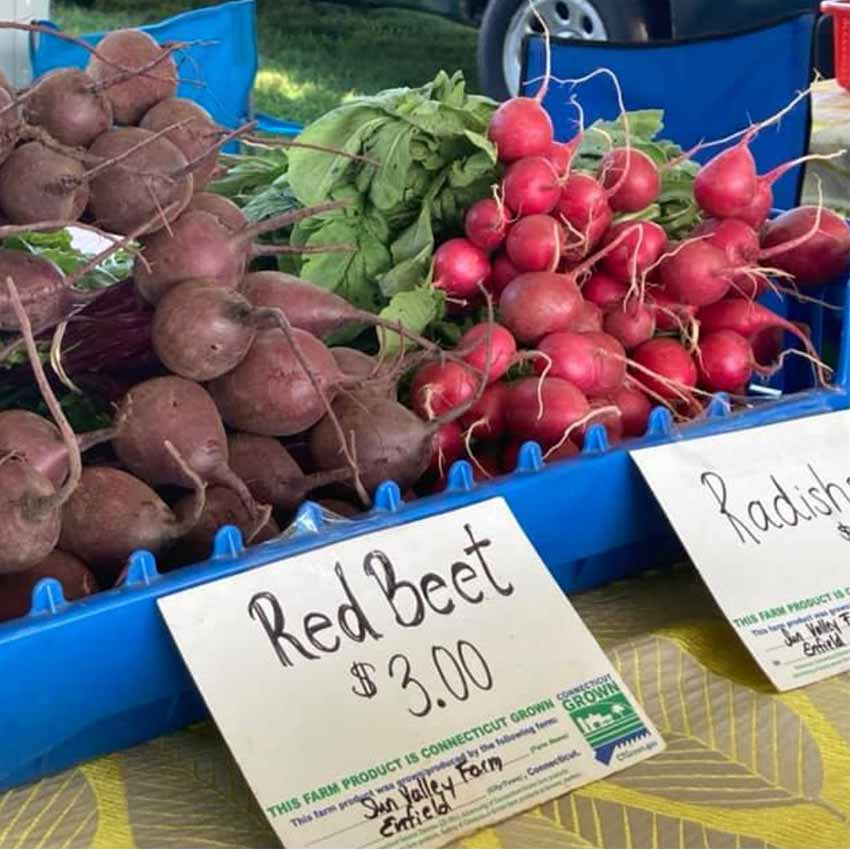 Red Beets and Radishes